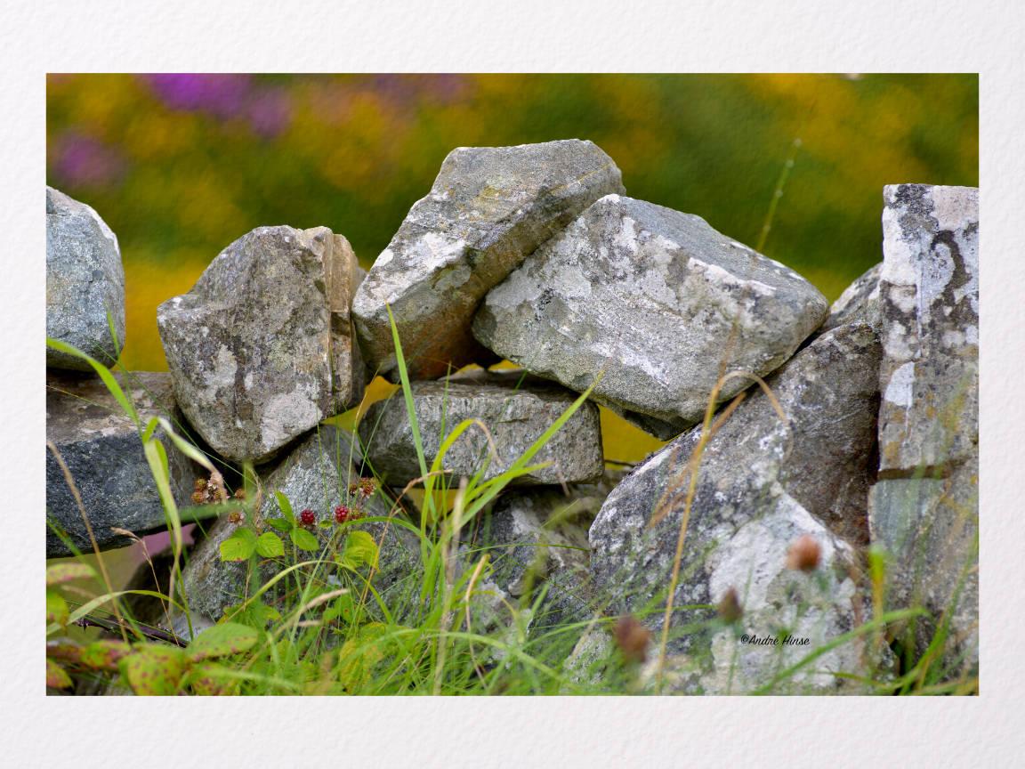 Steinmauer mit Pflanzen auf Arches Aquarelle